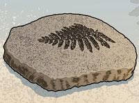 fossil-200x148