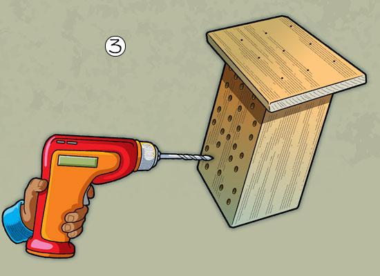 Build A Bee house step 3