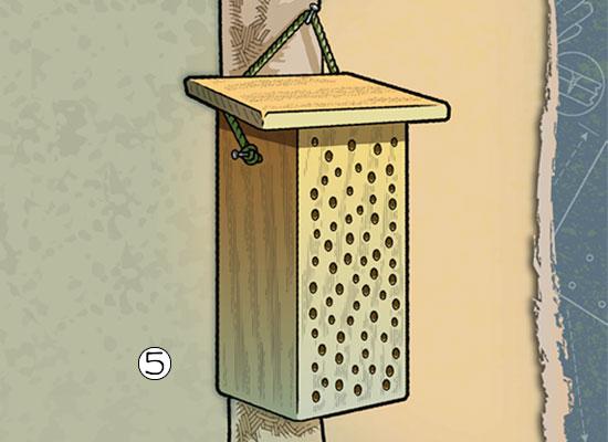 Build A Bee house step 5