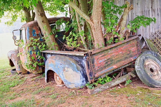 treetruck