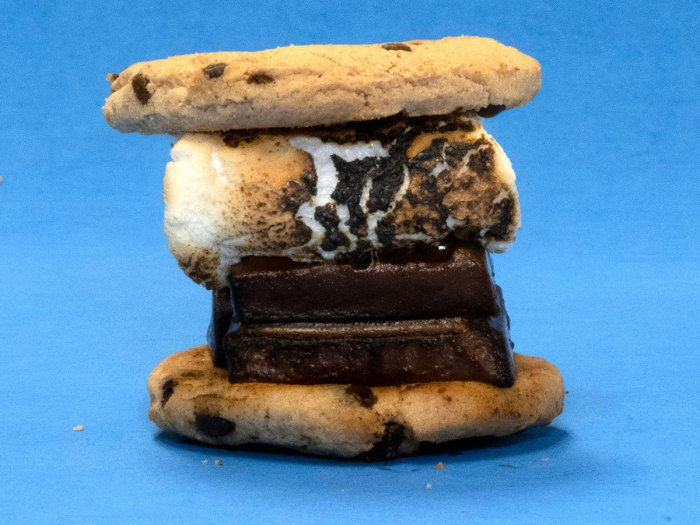 Chocolate Chip Cook Smore