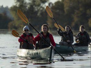 Swamp-base-paddling